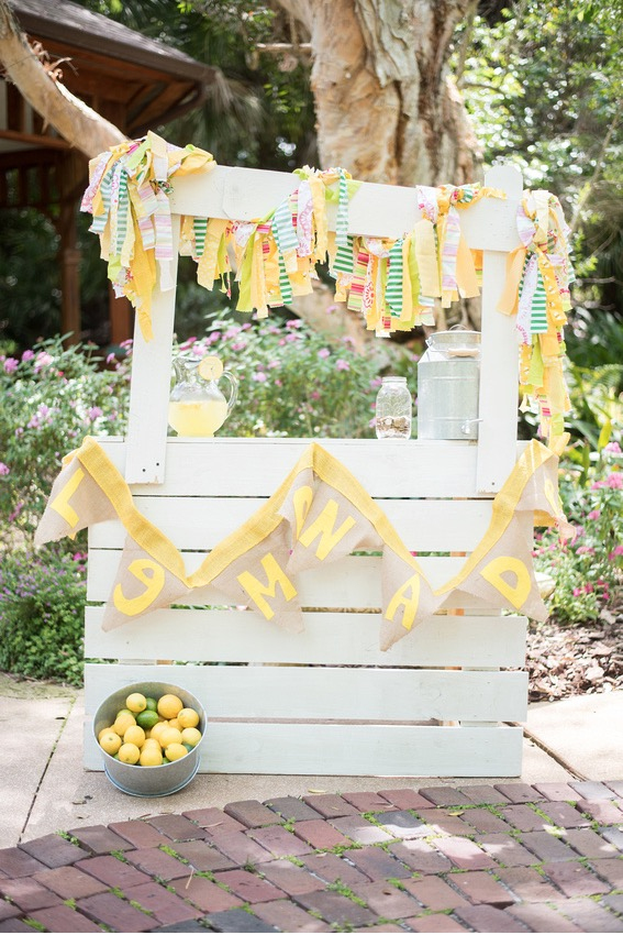 lemonade-stand-in-the-gardens-childs-photography-leah-dorr-photography